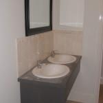 Toilet sinks